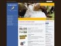 Bodenwelten.de: Screenshot