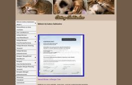 Cattery   Sabbiadore