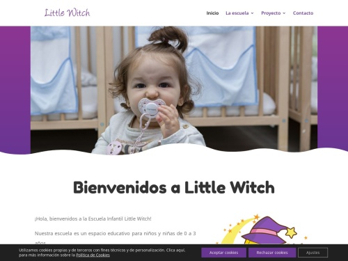 Opiniones sobre  Escuela Little Witch