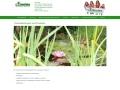 www.kuvin.de Vorschau, Kinder und V�ter in Not