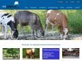 Noegenetik - N�. Genetik Rinderzuchtverband: Screenshot