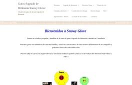 Snowy Glove *ES