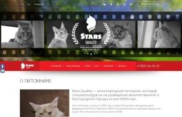 Stars Quality