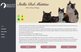 Stella Del Mattino