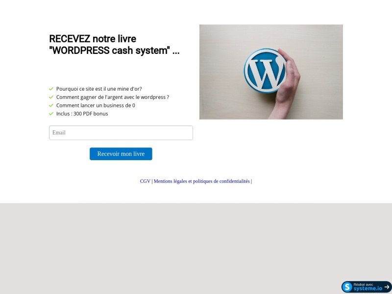 wordpress cash system