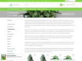 Get cannabis Seeds For Sale From 420 Green Market