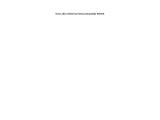 Liver – Online Herbal Store Pakistan