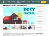 Bed Bugs Control Service in Hyderabad
