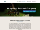 Wasp Nest Removal & Bee Exterminator Treatment in Ottawa
