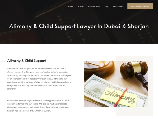 Alimony & Child Support Lawyers In Dubai