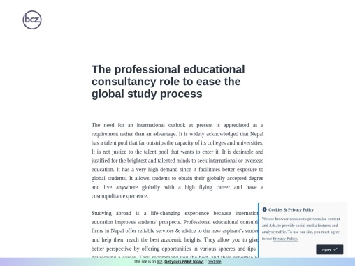 The professional educational consultancy role to ease the global study process