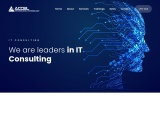 Leading IT Consulting Services In Abu Dhabi | Accel Information Technology