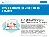 CMS & Ecommerce Web Development Services