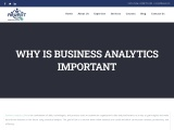 WHY IS BUSINESS ANALYTICS IMPORTANT