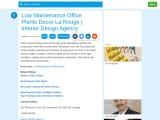 Best Low-Maintenance Office Plants – Decor La Rouge – Interior Design Agency