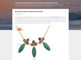 Amazonite necklace manufacturer from India