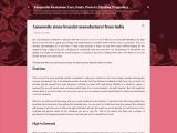 Amazonite stone bracelet manufacturer from India