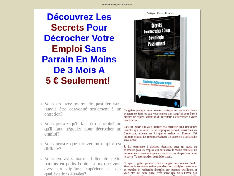 ebook _ secrets emploi