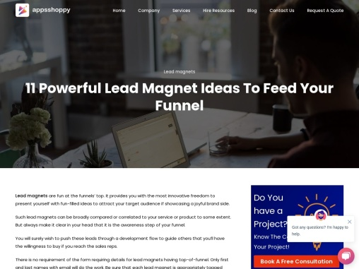 Title – 11 Powerful Lead Magnet Ideas To Feed Your Funnel