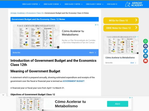 government budget class 12 notes
