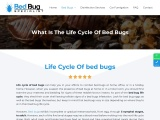 BED BUG SPECIALIST IN SINGAPORE