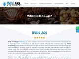 Commercial bed bugs specialist