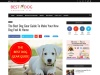 The Best Dog Gear Guide To Make Your New Dog Feel At Home