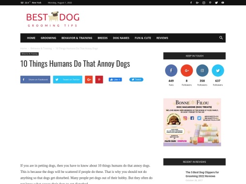10 Things Humans Do That Annoy Dogs