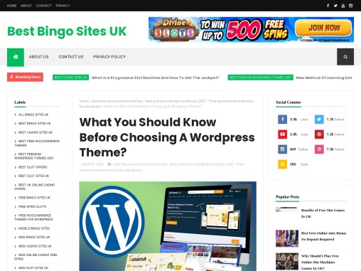 What You Should Know Before Choosing A WordPress Theme?