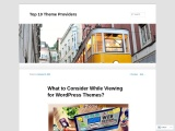 What to Consider While Viewing for WordPress Themes?