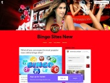 What all you can expect in most popular new online bingo sites?