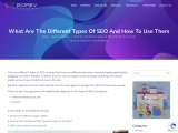 What Are The Different Types Of SEO And How To Use Them