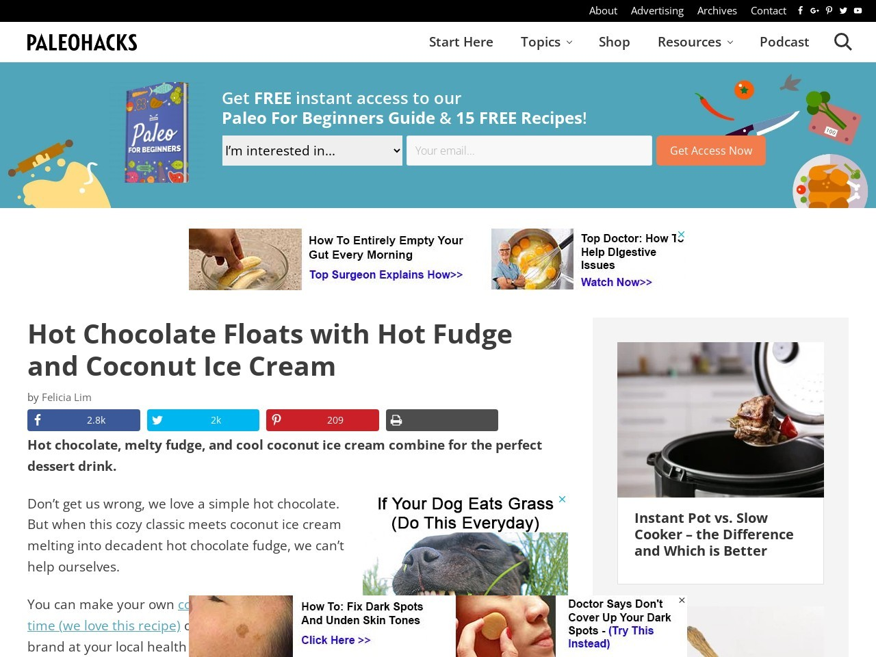 Hot Chocolate Floats with Hot Fudge and Coconut Ice Cream