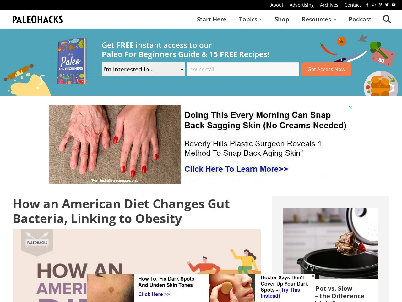 How an American Diet Changes Gut Bacteria, Linking to Obesity