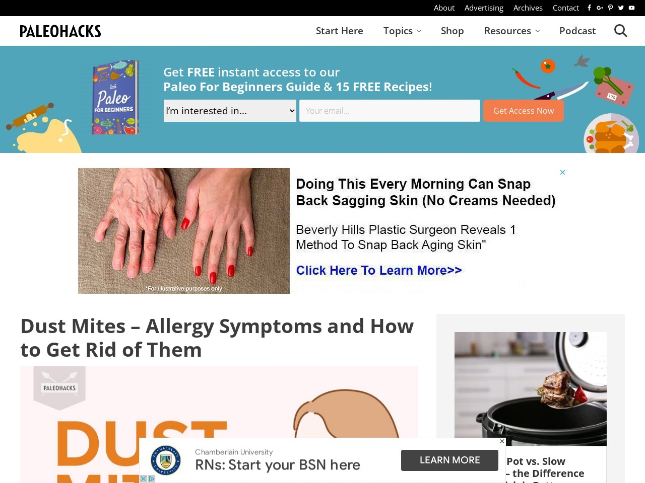 Dust Mites – Allergy Symptoms and How to Get Rid of Them