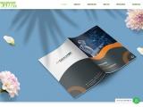 BEST ADVERTISING AGENCY INDIA DIGITAL BRANDING COMPANY