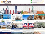 WordPress website developers malaysia Unlimited pages