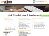 website development singapore