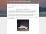 Luxus Kissen (Luxury Pillows) – Weiss Kissen – Tencel Kissen – Hochwertige Kissen : Byakuya