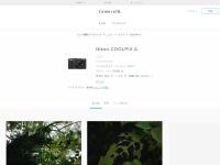 Nikon COOLPIX A 写真、おすすめブログに作例サイトまとめ | かめらとデータベース / かしゃっと。
