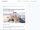 The Best Affiliate Programs For Newbie Bloggers