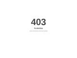 Burnt Orange Dress – Chardonnay Boutique