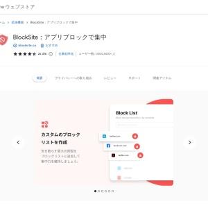 Block Site - Website Blocker for Chrome™ - Chrome Web Store