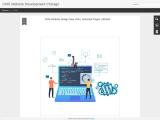 cms website development chicago