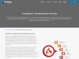 Codeigniter Development Company | Codeigniter Development Services