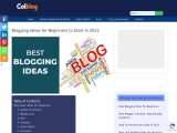 Beginners blogging tips