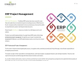ERP implementation & Project Management in Ireland