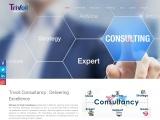Best Political Consultancy Firm in India | Mumbai | Trivoli Consultancy