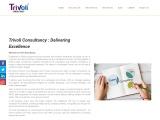 Best Political Consultancy Firm in India | Political Digital Marketing Agency | Trivoli Consultancy
