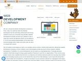 Web Development Company In Pune | Website Development Company In Pune